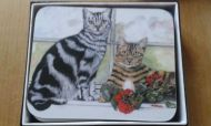 Cats Placemats